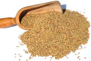 Ricetta delle lenticchie di Castelluccio - lentils recipe